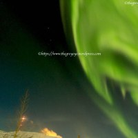 Just saw Northern Lights...beyond words..